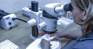 Testing & measurement Facilities operational